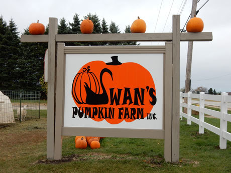 Swan's Pumpkin Farm in Racine County