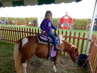 Swan's Pumpkin Farm in Racine County - Pony Rides