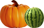 Swan's Pumpkin Farm in Racine County - Wholesale Pumpkins and Watermelons Available